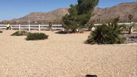 Ranch rail fencing in desert overlooking mountains